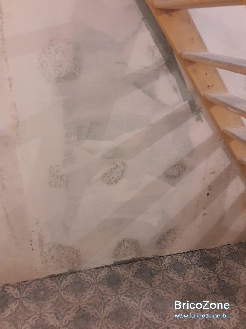 extracteur d air cave humide interesting arateur centrifuge en ligne minimax vortice with. Black Bedroom Furniture Sets. Home Design Ideas