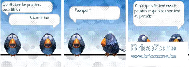 socialos.png