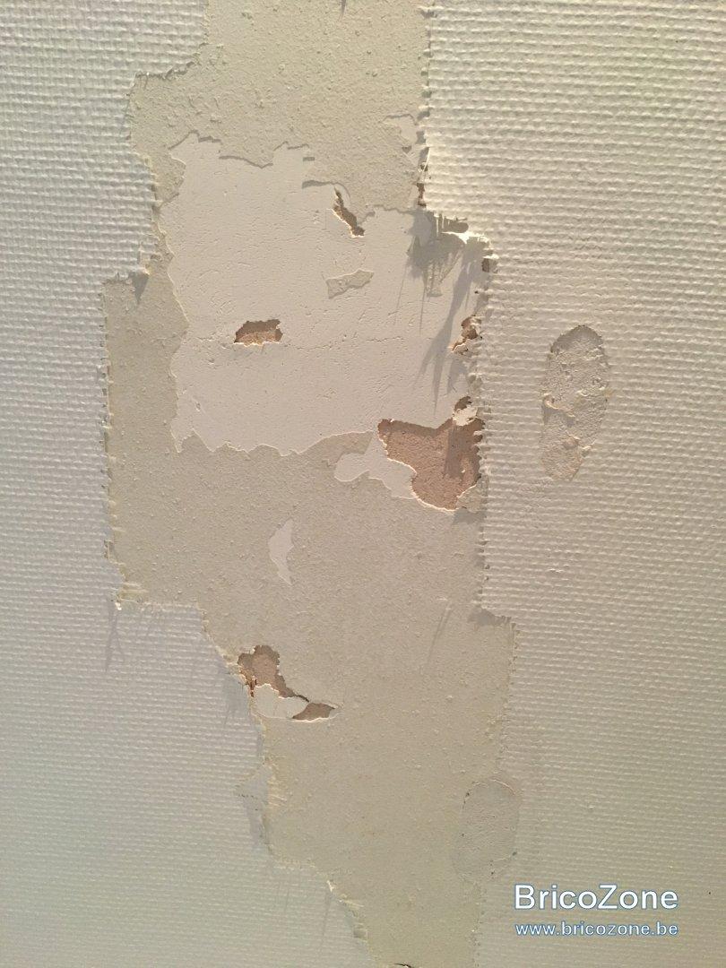 Réparer Un Plafond En Platre avec desespoir plafond torchis plâtre fibre de verre à réparer