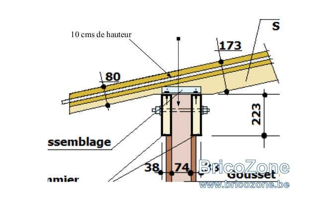 10 cms.jpg