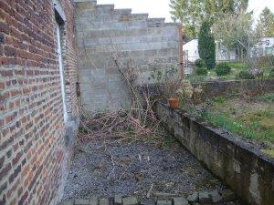 jardin (6).JPG