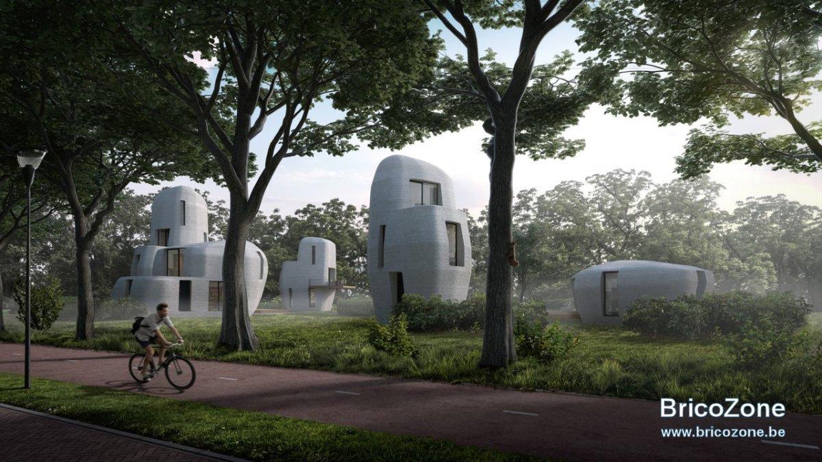Maisons 3D.jpg