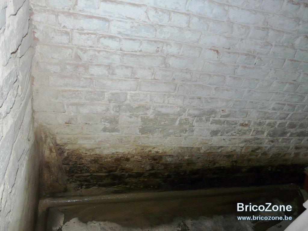 Déchaulage murs cave-8.jpg