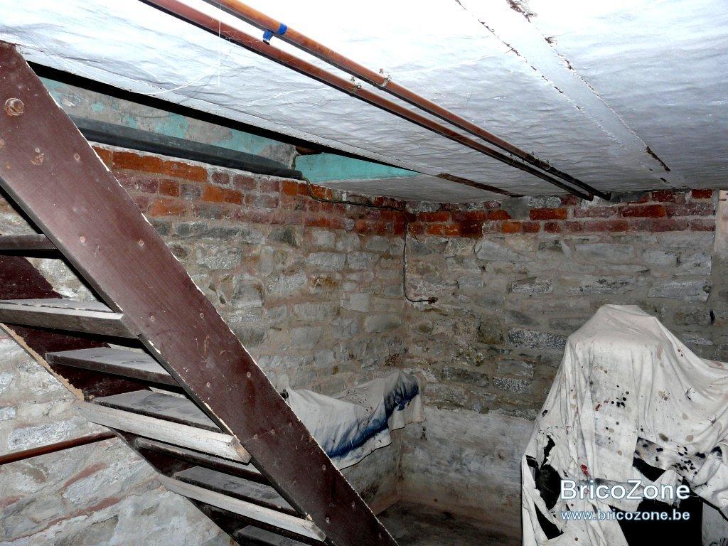 Déchaulage murs cave-12.jpg
