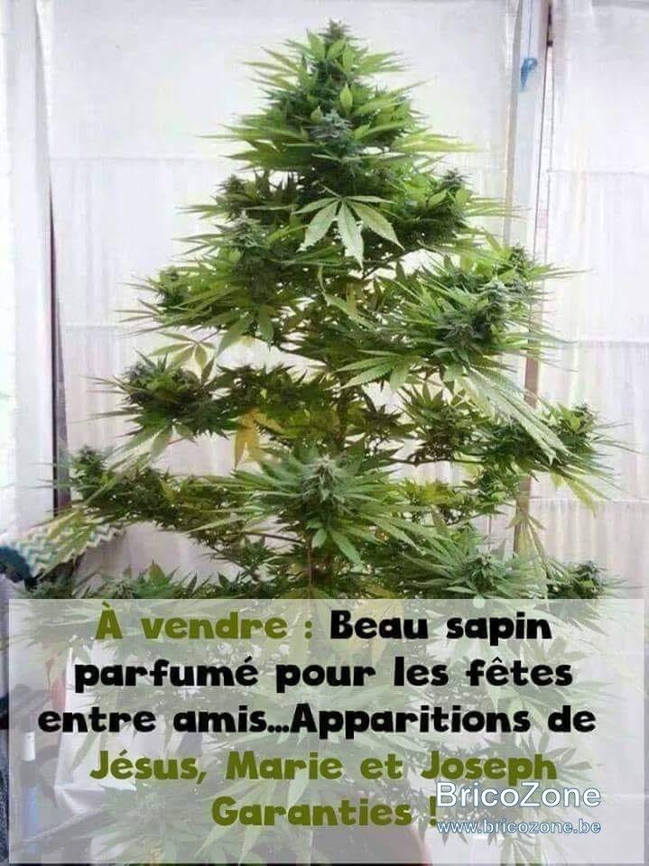 Noël.jpg