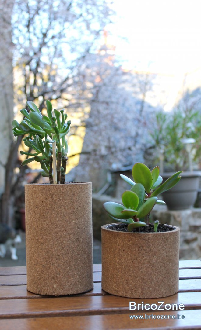 pots-fleurs-liege.jpg