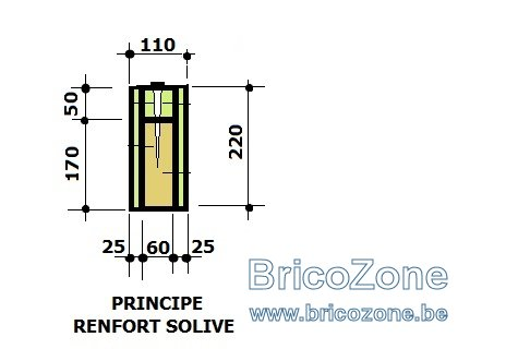 RENFORCEMENT DE SOLIVE110 x 220.jpg