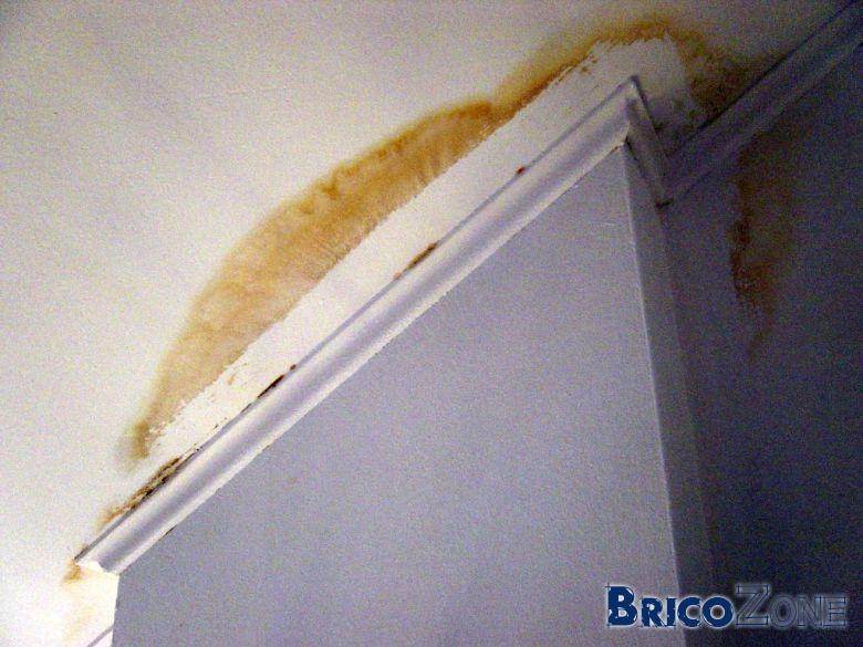 Avis sur t che au plafond - Taches d humidite sur les murs ...