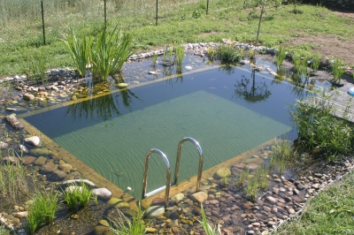Piscine naturelle for Bache bassin prix