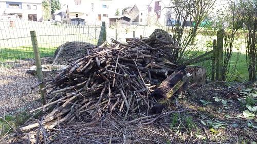 A donner - Bois (possibilité chauffage) sur Bastogne
