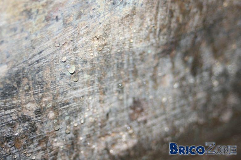 salpetre mur exterieur best moisissure mur chambre chambre et comment enlever l humidit sur les. Black Bedroom Furniture Sets. Home Design Ideas