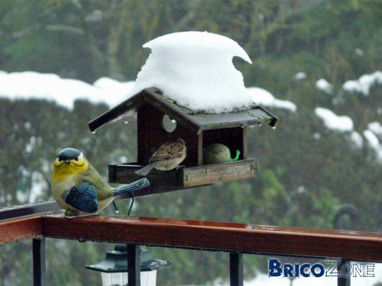 Abreuvoir oiseaux anti-gel