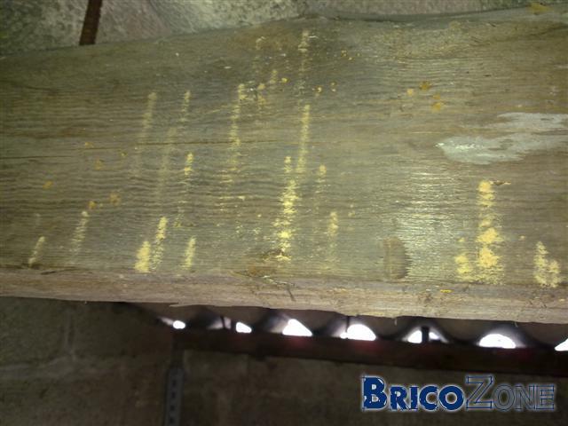 Tat d 39 une poutre sur un box garage for Produit traitement petite vrillette