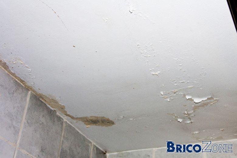 Repeindre Plafond Salle De Bains - Peindre plafond salle de bain
