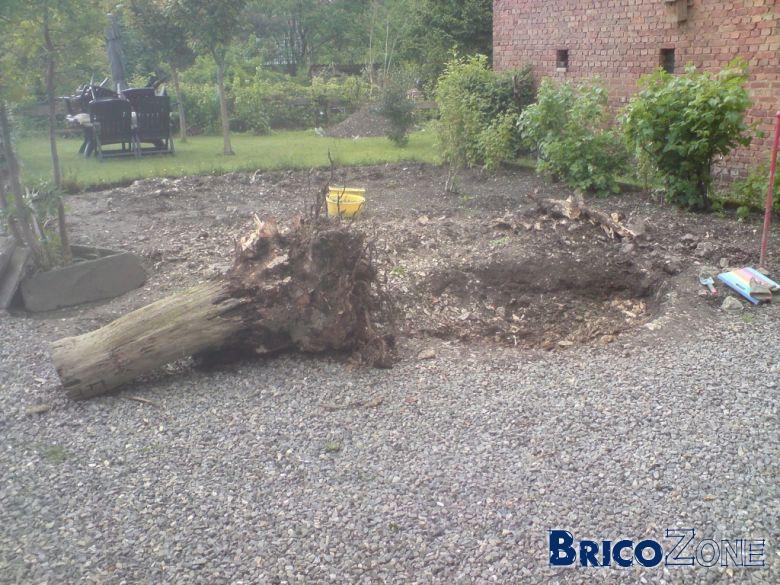 Enlever rapidement les racines et le tronc d 39 un arbre page 2 - Detruire souche arbre rapidement ...