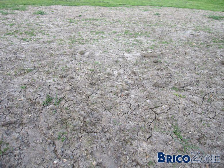 après combien de temps et quand semer le pelouse