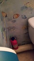 Comment raccorder citerne d'eau de pluie au wc ?