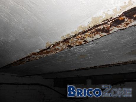 Humidité plafond de cave