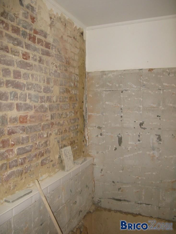 Sdb ancien plafonnage retir platrer - Que mettre sur un mur abime ...