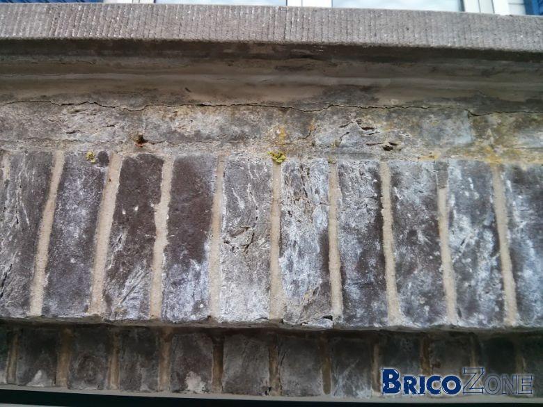 Mur Extérieur - Est-ce du Salpêtre?