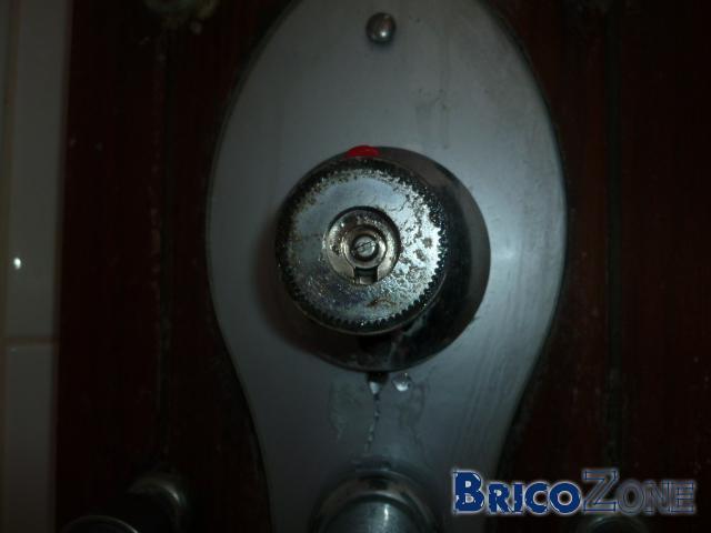 Fuite robinet thermostatique colonne de douche Valentin