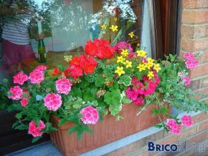 Tous au balcon... pour planter des fleurs :)