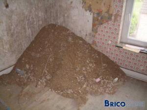 Surprise en arrachant de vieux plafonds...