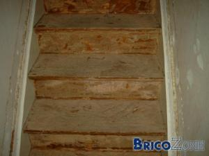 conseil renovation escalier anciennement broux de noix. Black Bedroom Furniture Sets. Home Design Ideas