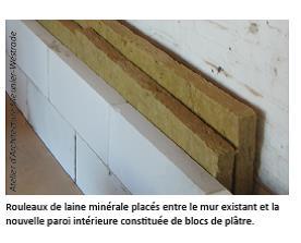 Moisisure sur plaques de plâtres