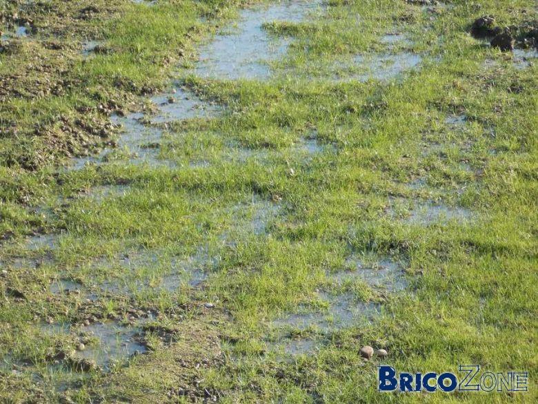 Solution drainage pour terrain super argileux - Comment drainer un terrain ...