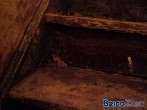 escalier a restaurer