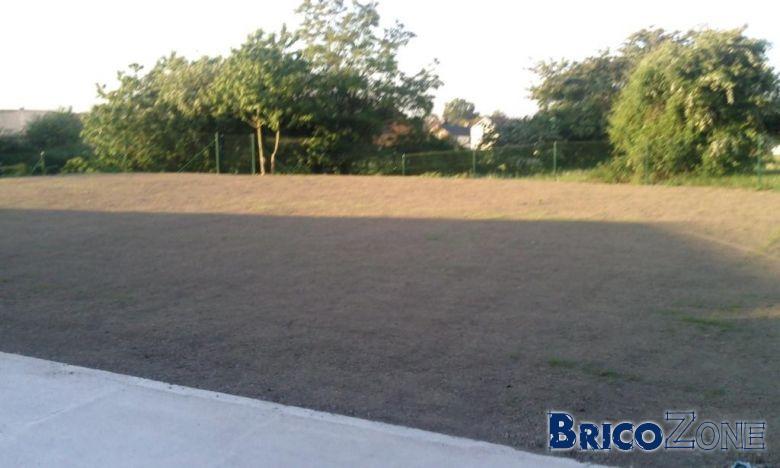 nouvelle pelouse, arroser ou pas?