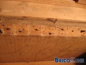 Comment réparer un esaclier qui a été partiellement bouffé par les mites ?