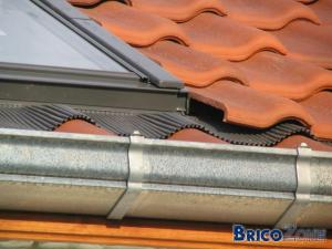 Ma toiture...plutôt la Belle ou la Bête?
