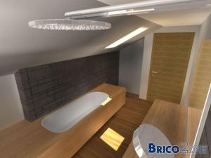 Aménagement d'une salle de bain dans veille maison