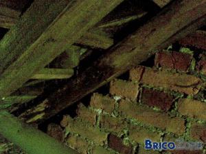 toiture et charpente : besoin avis