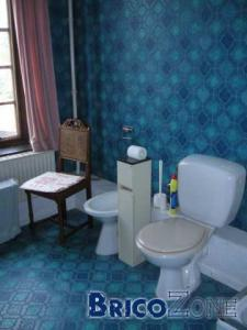 salle de bain kitch