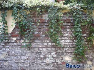 Pour Vous Faire Plus Une Idée Voici Quelques Photos Du Murs Extérieur.