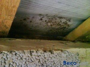 Isolation toiture : Comment r�parer cela?