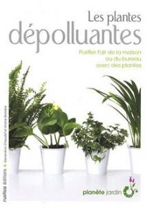 rentrez vos plantes.