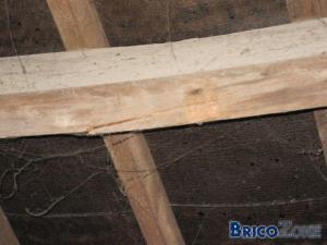 Probl�me de toiture.....