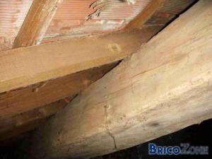 placement pare vapeur sur vieille toiture