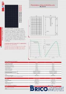 Photovolta�que - Panneau polycristallin DS6PB 240 Wc