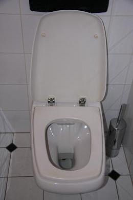 abattant wc ideal standard verdi m canisme chasse d 39 eau wc. Black Bedroom Furniture Sets. Home Design Ideas