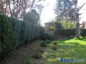 Solutions pour finitions de mon jardin ?