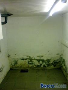 Humidité dans cave qui remonte dans le salon !! help!!