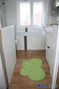 Salle de bain: parquet, lino,..?