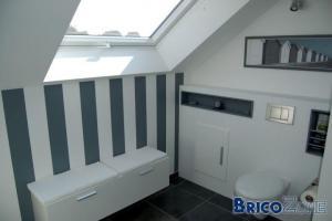 Habillage / Cloison d'un WC suspendu   (Explications et détails)