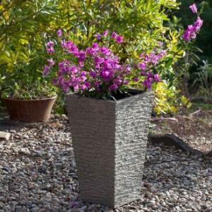 Cherche plantes pas cher pour cacher mur de cloture pas for Composition jardiniere exterieure