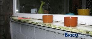 seuils de fenêtre en bois (remplacement)